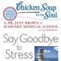 CSS Say Goodbye to Stress book cover